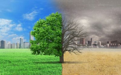 Österreich: Klimastrategie soll in den nächsten Wochen präsentiert werden
