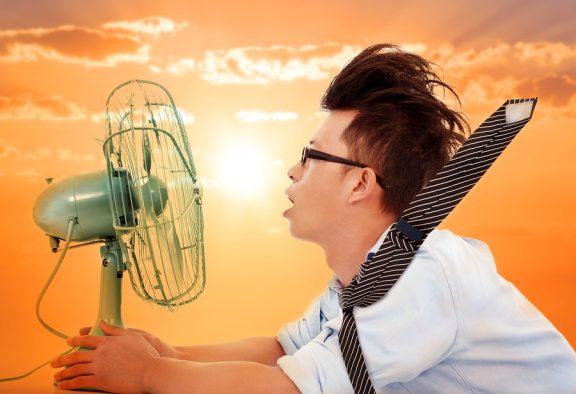 Der Sommer ist angekommen: Tipps und Tricks für eine kühle Wohnung